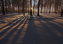http://prometej-photo.ru/preview/impression/837798523.jpg