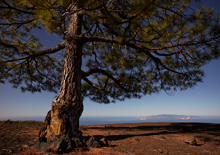 http://prometej-photo.ru/preview/landscape/-IIMG_7915_Tenerife.jpg