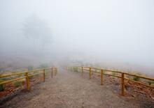 http://prometej-photo.ru/preview/landscape/-IIMG_8349_Tenerife.jpg